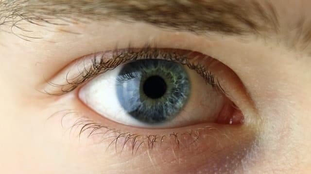 Blick Mann